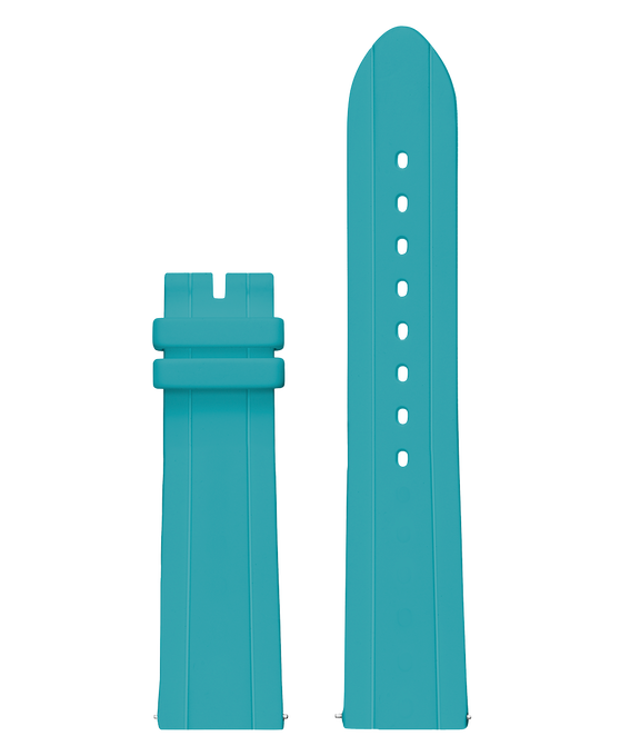 Interchangeable 41mm Strap